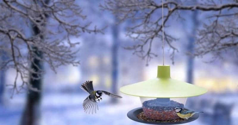 """Karmnik dla ptaków """"FINCH"""" - seria URBALIVE 4"""