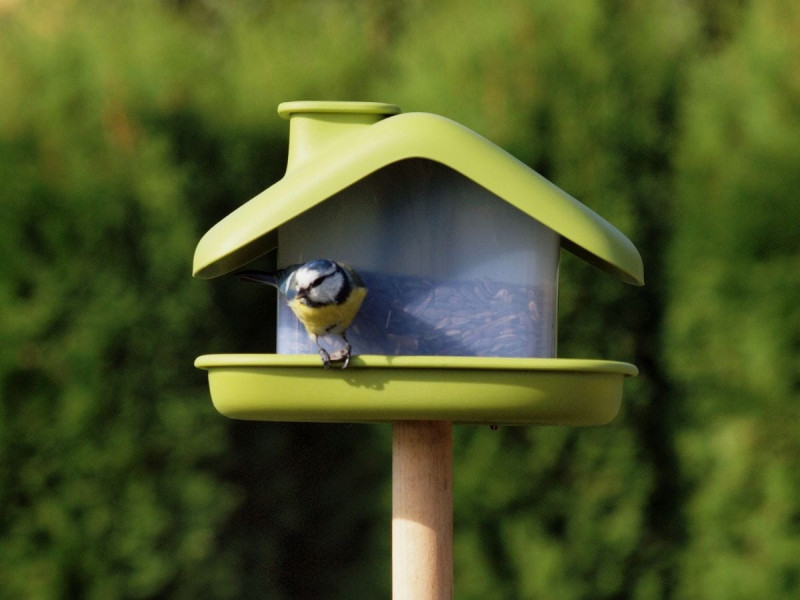 karmnik-dla-ptakow-domek-seria-urbalive.2